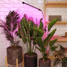 Светильник для растений на прищепке 8 Вт FT-004