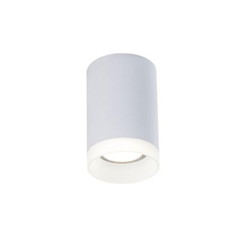 C008CW-01W Потолочный светильник Ceiling & Wall Pauline Maytoni